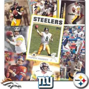 Pittsburgh Steelers Tommy Maddox 20 Card Set  Sports
