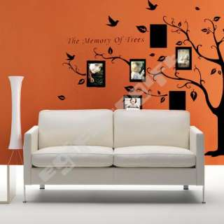 Photo Frame Tree Kids Room Art Mural Wall Sticker Decal